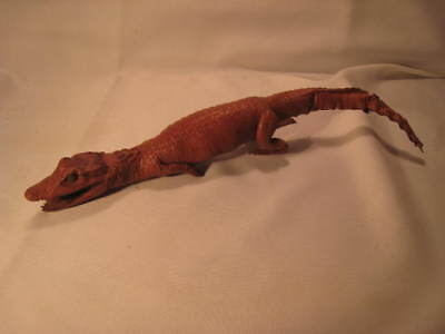 Taxidermy Real Baby Alligator Caiman Vintage