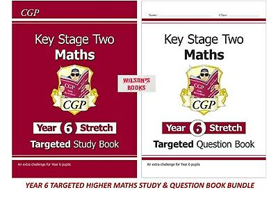 New!! For 2019 Ks2 Standard Maths Revision & Question Book