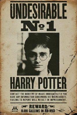 Harry Potter Undesirable No.1 Poster