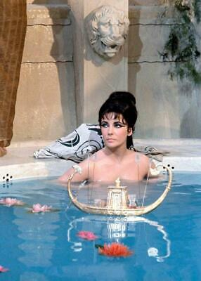 Elizabeth Taylor 8x10 Picture Simply Stunning Photo Gorgeous Celebrity #41