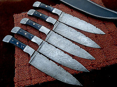 Full Tang Lot of 5pc set Hunting knife With Buffalo Horn Handle  ZS-1588