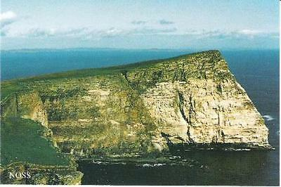Noss, Shetland - The Noup of Noss - local postcard