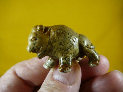 (Y-BUFF-551) BUFFALO bison gemstone Tan Stone FIGURINE carving WOW
