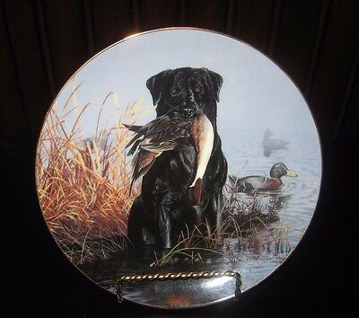 Faithful Companions OPENING DAY Scot Storm Black Labrador Puppy Dog Lab Plate