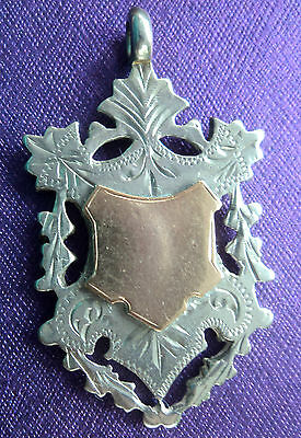 Attractive Silver & Gold Medal / Fob - William Hair Haseler 1909 - not engraved