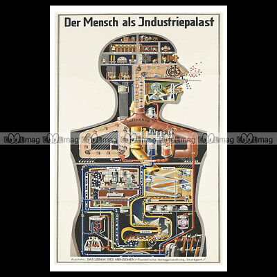 #phpb.000117 Photo DER MENSCH ALS INDUSTRIEPALAST 1926 Advert Reprint