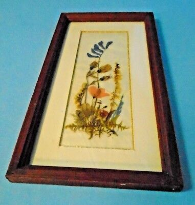 Wayside Blooms Dried/Pressed Flowers Matted In Walnut Frame