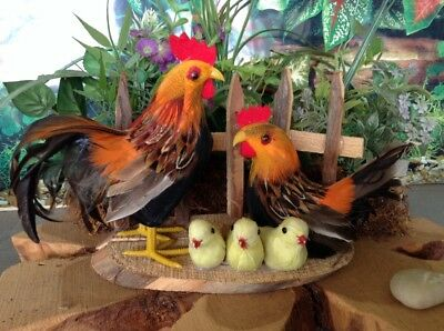 """Realistic Chickens Rooster Hen Chicks Real Feathers Lifelike Figurine 5""""H X 8"""""""