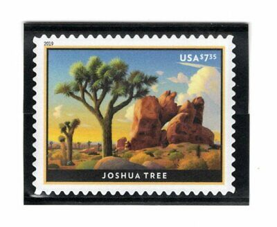 5347 Joshua Tree Priority Mail Single (Nicly Mounted) 2019 - MNH