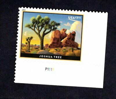 PB 5347 Joshua Tree Priority Mail #P1111 (ClearPerf's) 2019 - MNH