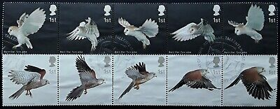 GB 2003 Birds of Prey Used Off Paper Block ex First Day Cover