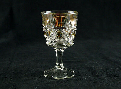 US Glass Bulls Eye and Daisy Wine Glass Gold Circles, Antique EAPG 1909, Newport