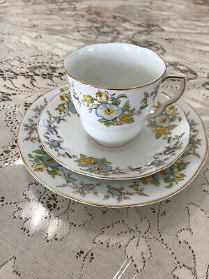 Radfords Fenton England Bone China Tea Cup & Saucer & Plate Mayfair Pattern