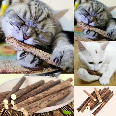 5/10/15/20/25x Pet Catnip Kitten Chew Stick Catnip Molar Toy Matatabi Natural