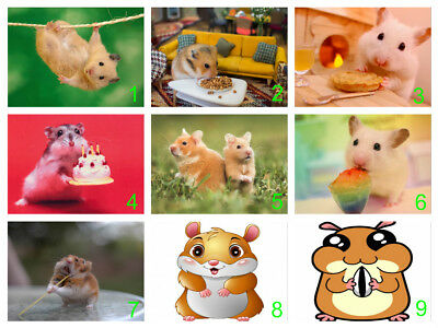 Personalised Edible Hamster Cake Topper Icing or Wafer Paper