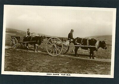 Scotland Scottish Islands FAIR ISLE Shetland Oxen Carts published Ramsay Lerwick