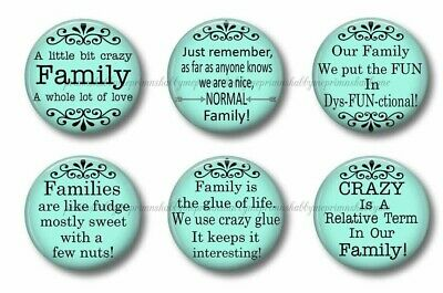 FUNNY FAMILY SAYINGS Quotes Fridge Magnets Set of 6 Party ...