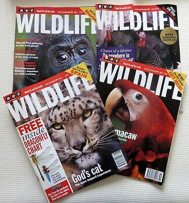 Bundle BBC WILDLIFE Magazine August, September, October, December 1994