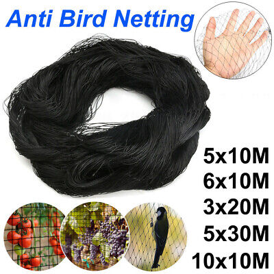 5 Sizes Black Anti Bird Net Netting Protection Plants Veg Crops Fruit Garden New