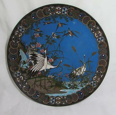 "Exquisite 12"" Antique Japanese 19thc Meiji Cloisonne Plate - Cranes & Birds"
