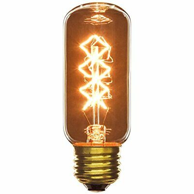 40T12/CF Incandescent 40W E26 Based Carbon Filament Antique Style T12 Bulb Clear