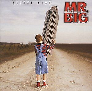 USED CD Actual size MR.BIG