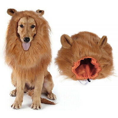 Hat Furry Pet Hat Costume Lion Mane Wig For Cat Halloween Dress Up With Ears