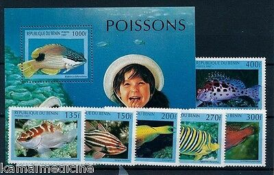 Stamps Benin 978-983 Mint Never Hinged Mnh 1997 Marine Fish