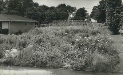 1982 Press Photo Vacant residential lot covered with weeds in Racine.