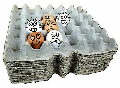 Cardboard Chicken Egg flats egg trays egg cartons for small medium Large and ...