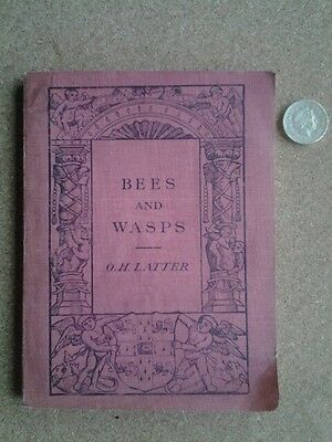 Bees and Wasps by O H Latter~104 Year Old Antique~FIRST EDITION V RARE~100%RATIN