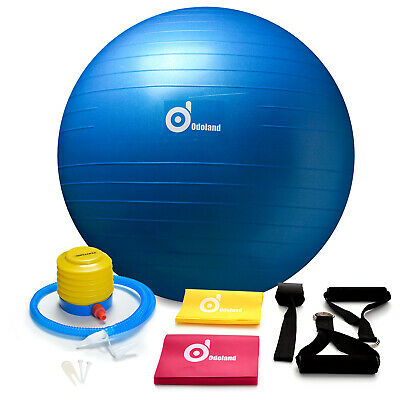 Exercise Ball Yoga 65cm Fitness Pilates Stability Workouts Weight Loss Kit