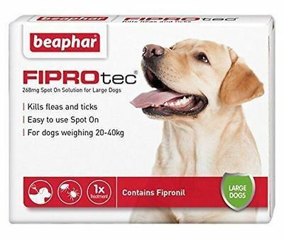 Beaphar Fiprotec FIPROtec Flea Spot On large dog 1 Treatment