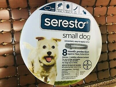 Bayer Seresto Flea and Tick Collar for Small Dog, 8 Month Protection