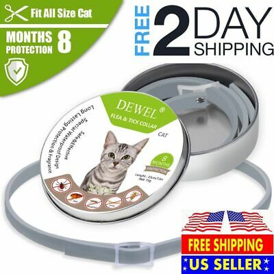 SERESTO CATS Flea Tick Collar Pets Cats And Protection 8 Months - DEWEL USA-BEST