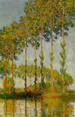 5 dvd 30000 Stock Images Photo Artistic Art Paintings Masters C Monet Poplars on