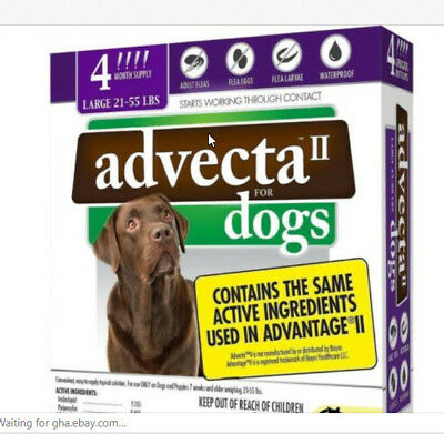 NEW Advecta II For  Dogs over 21-55LBS Same ingredients as Advantage II 4 doses