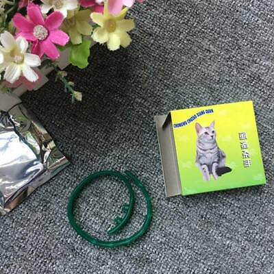 Summer Flea and Tick Collar for Small Pet Cat Dog Anti Insect 8 Month Protection
