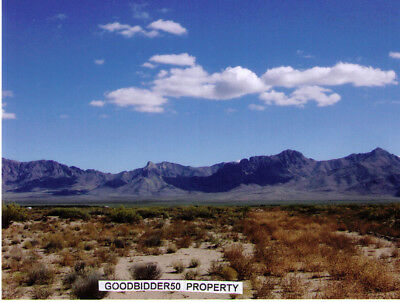 1 Acre vacant land in Luna County, New Mexico. Owner financing $110 down payment