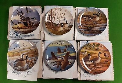 Set of 6 Wings Upon the Wind Canada Geese Plates Donald Pentz Dominion China