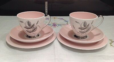 Queen Anne Harvest Pink Fine Bone China Tea Set 6pieces Cups Saucers Plate
