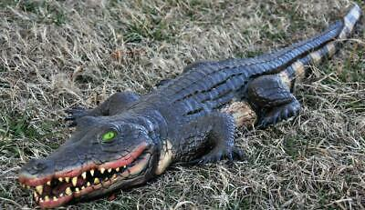 Life Size 4 Ft ALLIGATOR Crocodile Halloween Prop Yard Latex Decor HAUNTED HOUSE