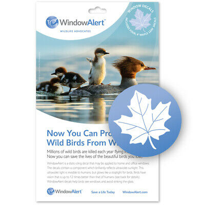 Window Alert UV Anti Bird Collision Decorative Stickers to Protect Wild Birds