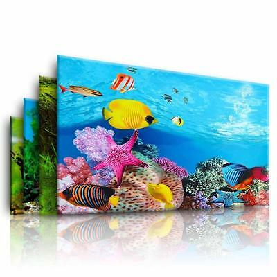 Double Side Aquarium Fish Tank Landscape Poster Backgrounds Film Sticker Decor