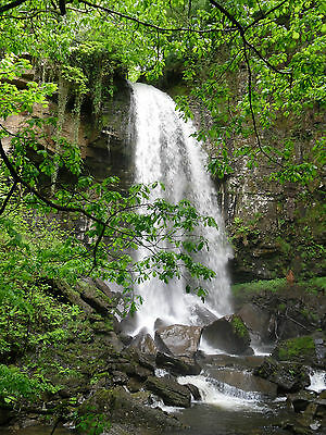 Holiday Cottage Nr Waterfalls, Brecon Beacons & Gower S. Wales 8th-13th July