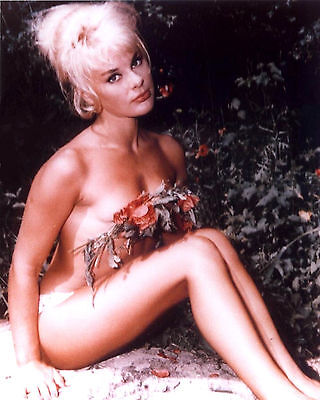 Elke Sommer 8x10 Photo  Classic Vintage Celebrity Actress Print 101816