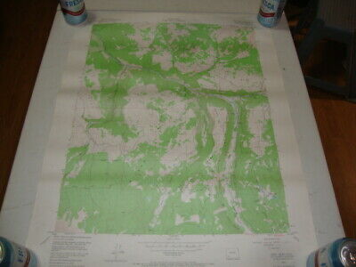 1953 U.S. Dept of INTERIOR GEOLOGICAL & ATOMIC ENERGY TOPO Map GRAY HEAD, COLO