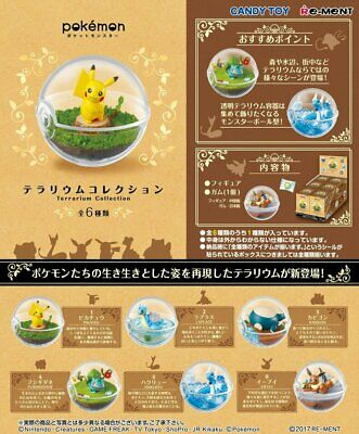 Re-ment Pokemon terrarium Collection 1 Box 6 pcs FROM JAPAN NEW w/Tracking