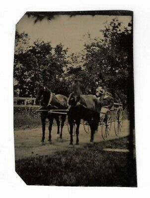 Antique HORSE DRAWN CARRIAGE Victorian Couple Riding in Buggy TINTYPE Photograph