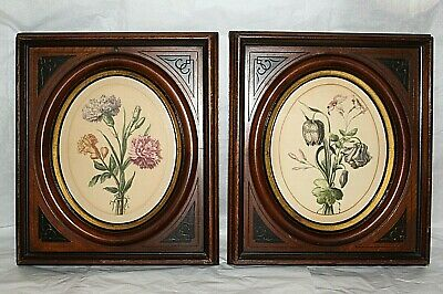 Antique Eastlake Victorian Shadow Box Wood Frame Pair Botanical Print Set Vtg